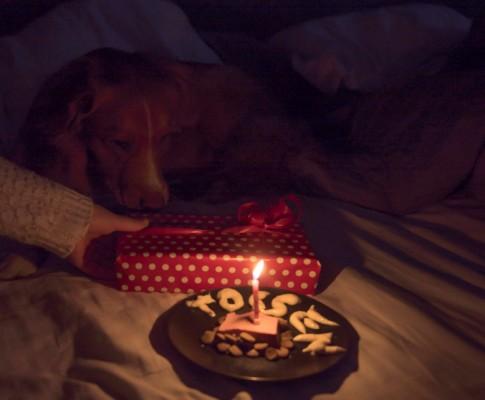 Första födelsedagen