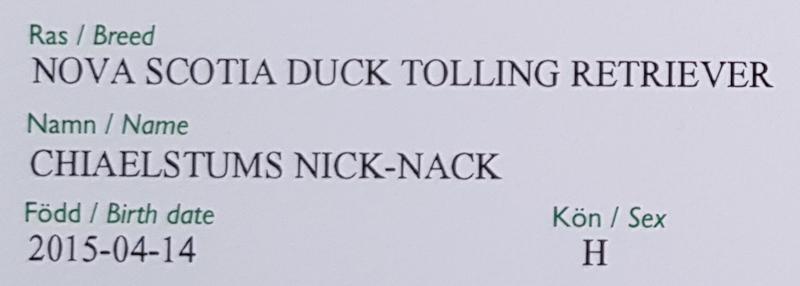 Chiaelstums Nick-Nack